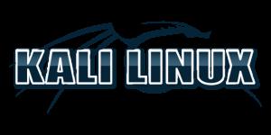 Installare Parallels Tools  su Kali Linux